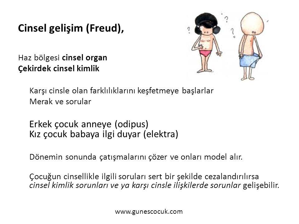 Cinsel gelişim (Freud),