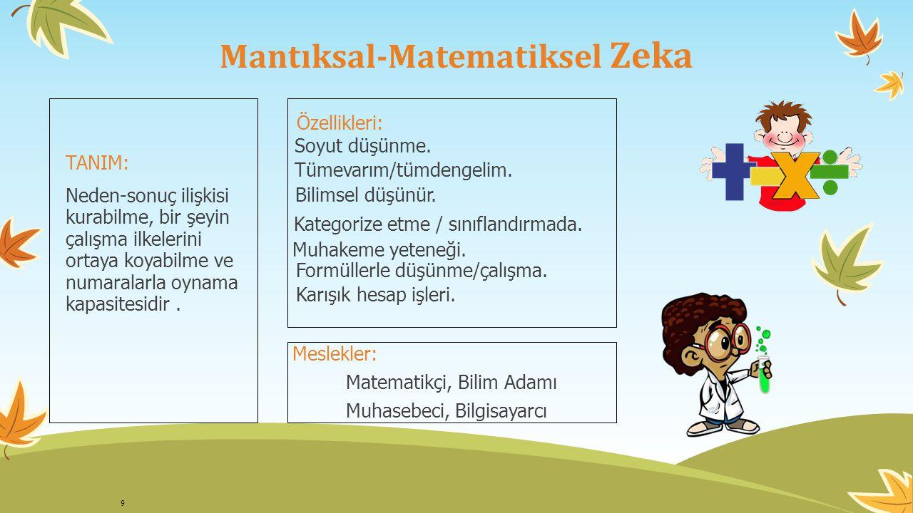 Mantıksal-Matematiksel Zeka
