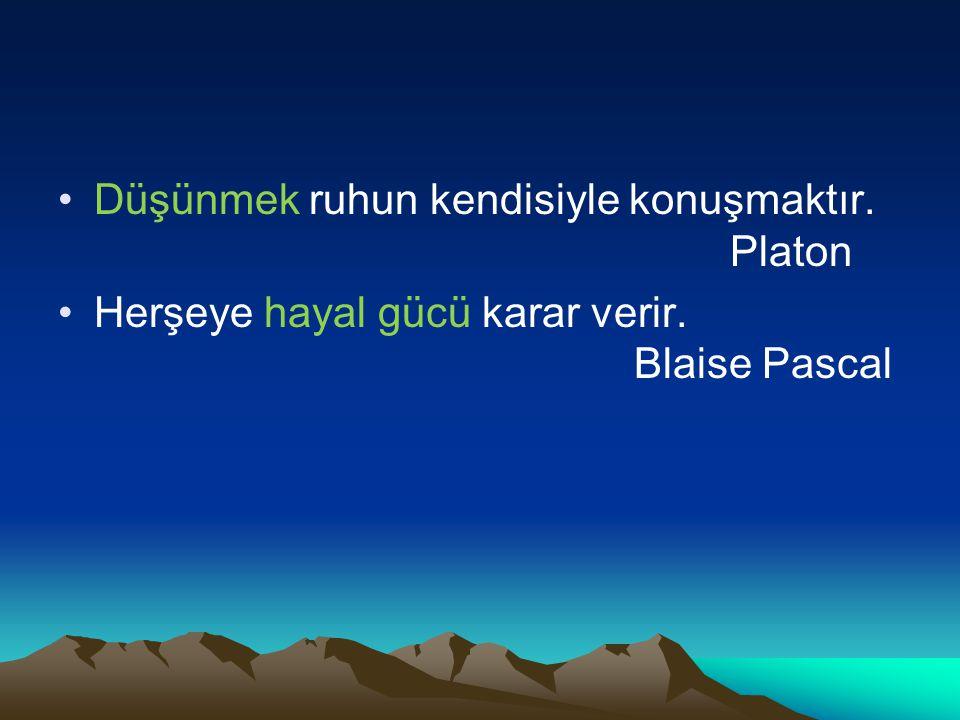 Düşünmek ruhun kendisiyle konuşmaktır. Platon