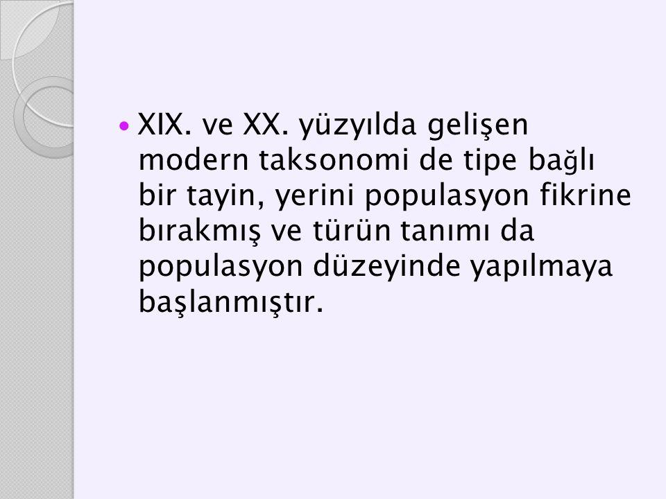 XIX. ve XX.