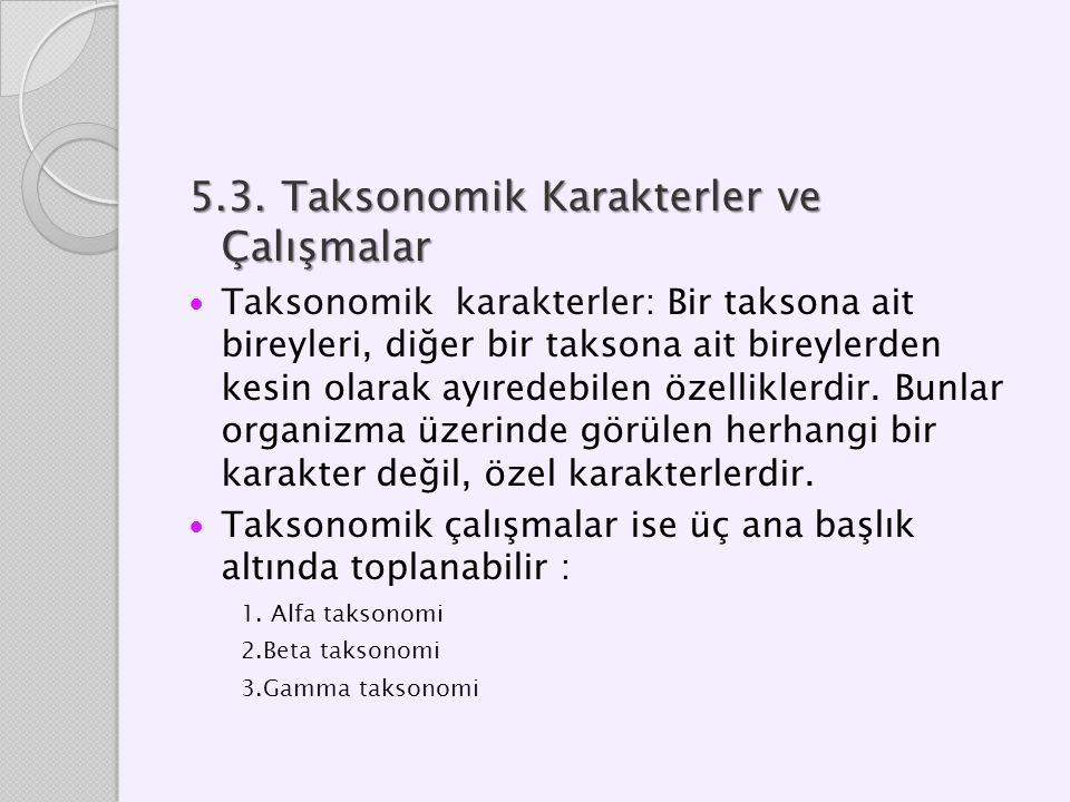 5.3. Taksonomik Karakterler ve Çalışmalar