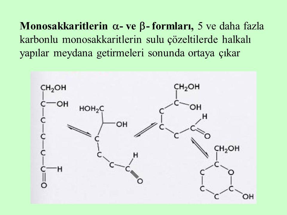 Monosakkaritlerin - ve - formları, 5 ve daha fazla karbonlu monosakkaritlerin sulu çözeltilerde halkalı yapılar meydana getirmeleri sonunda ortaya çıkar