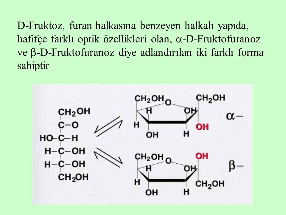 D-Fruktoz, furan halkasına benzeyen halkalı yapıda, hafifçe farklı optik özellikleri olan, -D-Fruktofuranoz ve -D-Fruktofuranoz diye adlandırılan iki farklı forma sahiptir
