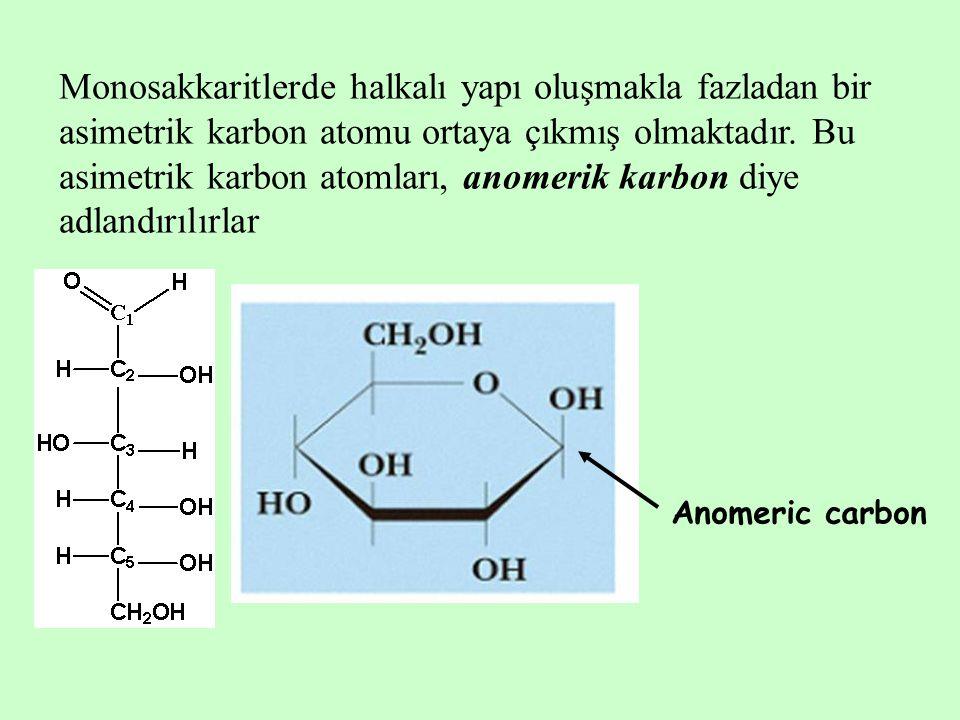 Monosakkaritlerde halkalı yapı oluşmakla fazladan bir asimetrik karbon atomu ortaya çıkmış olmaktadır. Bu asimetrik karbon atomları, anomerik karbon diye adlandırılırlar