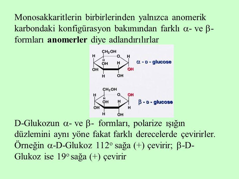 Monosakkaritlerin birbirlerinden yalnızca anomerik karbondaki konfigürasyon bakımından farklı - ve - formları anomerler diye adlandırılırlar