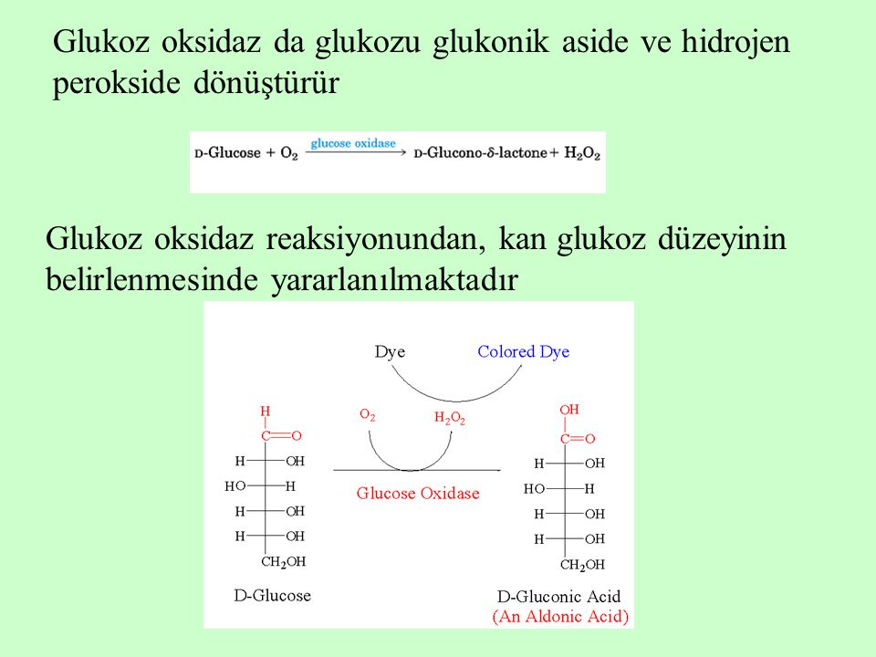 Glukoz oksidaz da glukozu glukonik aside ve hidrojen perokside dönüştürür