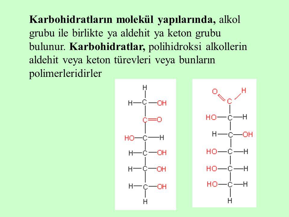 Karbohidratların molekül yapılarında, alkol grubu ile birlikte ya aldehit ya keton grubu bulunur.