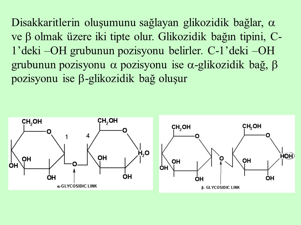 Disakkaritlerin oluşumunu sağlayan glikozidik bağlar,  ve  olmak üzere iki tipte olur.
