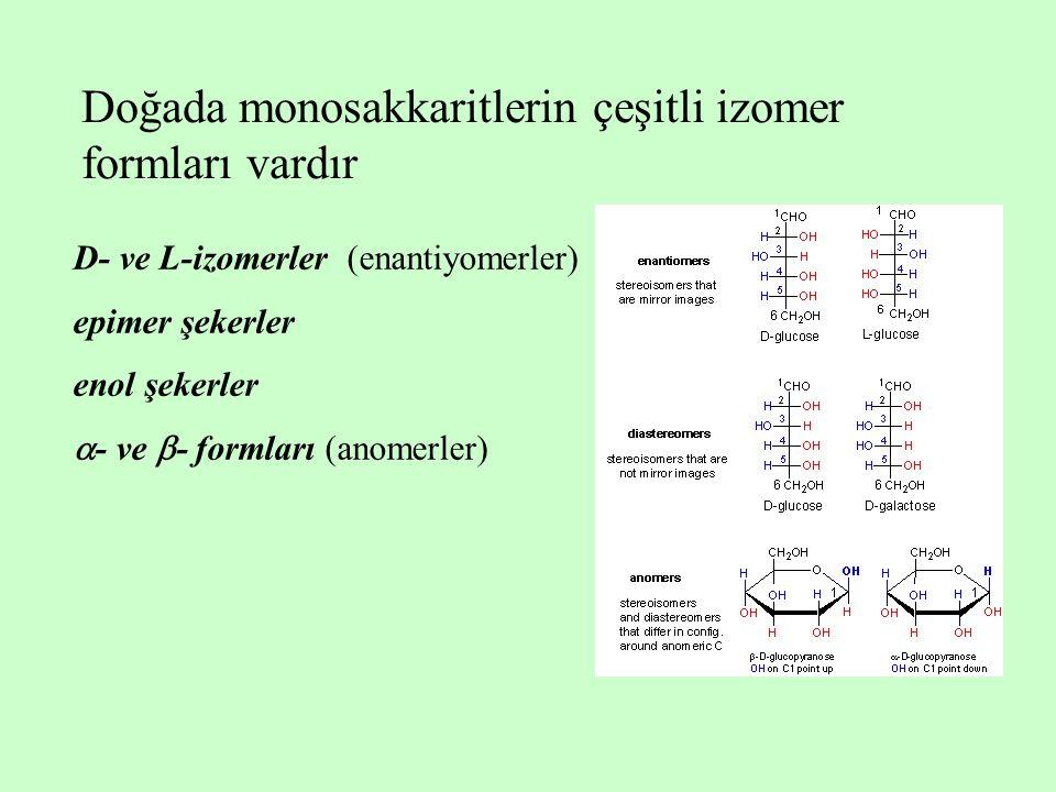 Doğada monosakkaritlerin çeşitli izomer formları vardır