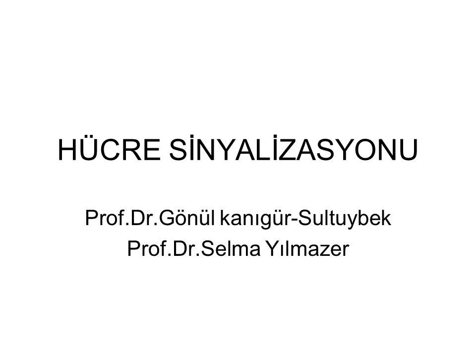 Prof.Dr.Gönül kanıgür-Sultuybek Prof.Dr.Selma Yılmazer