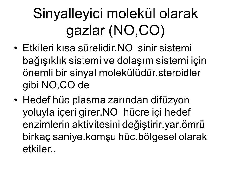 Sinyalleyici molekül olarak gazlar (NO,CO)
