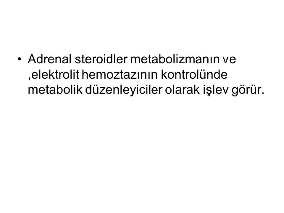 Adrenal steroidler metabolizmanın ve ,elektrolit hemoztazının kontrolünde metabolik düzenleyiciler olarak işlev görür.