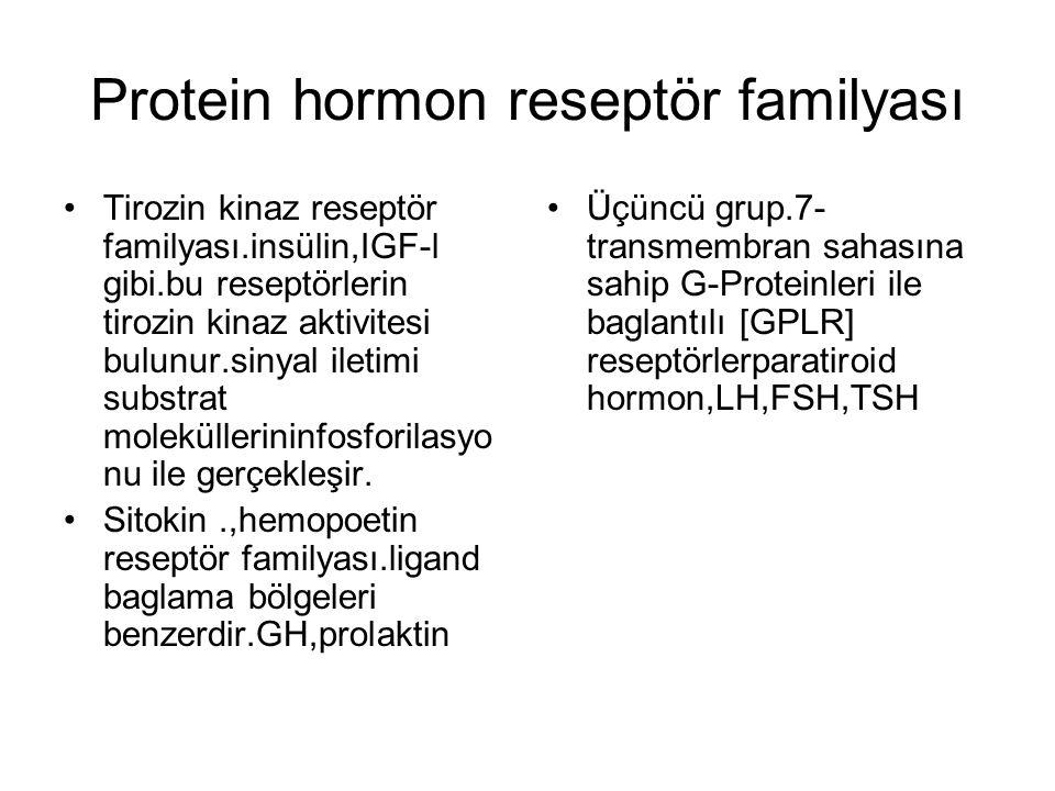 Protein hormon reseptör familyası