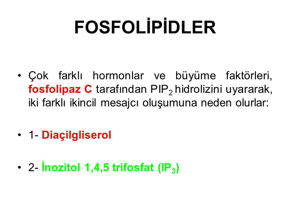 FOSFOLİPİDLER