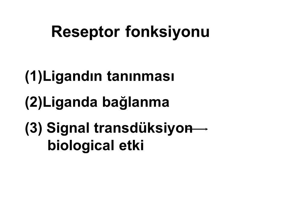 Reseptor fonksiyonu (1)Ligandın tanınması (2)Liganda bağlanma