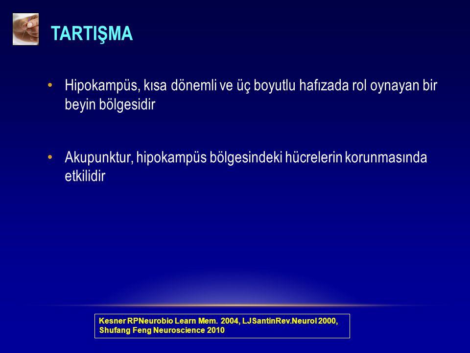 TARTIŞMA Hipokampüs, kısa dönemli ve üç boyutlu hafızada rol oynayan bir beyin bölgesidir.