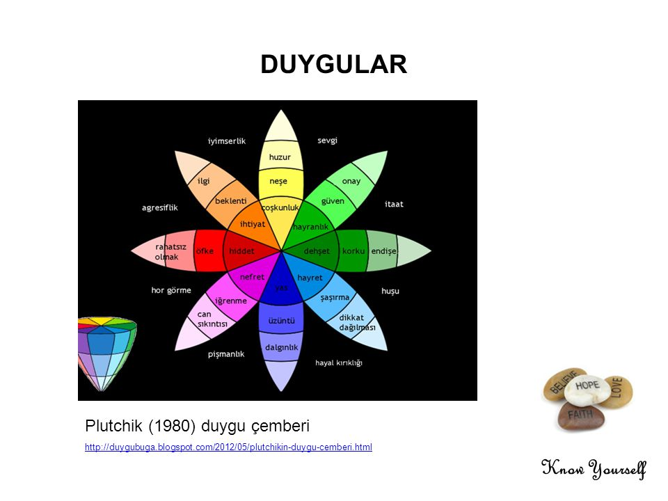 DUYGULAR Know Yourself Plutchik (1980) duygu çemberi 16