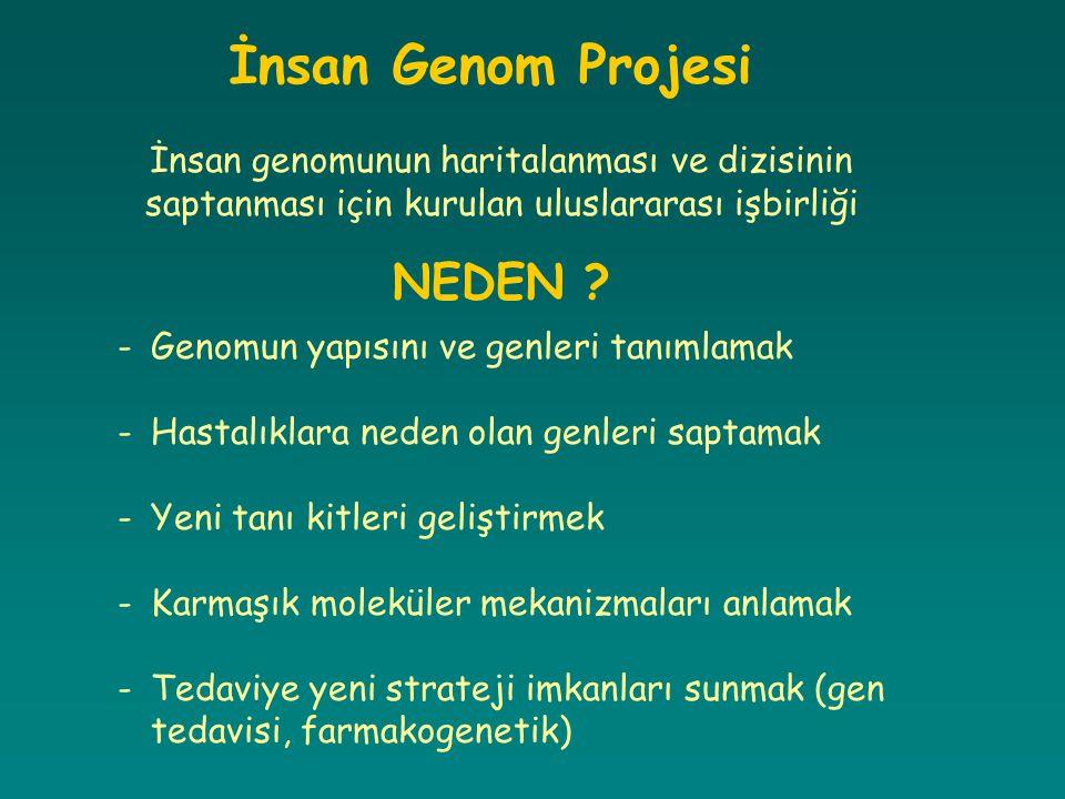 İnsan Genom Projesi NEDEN