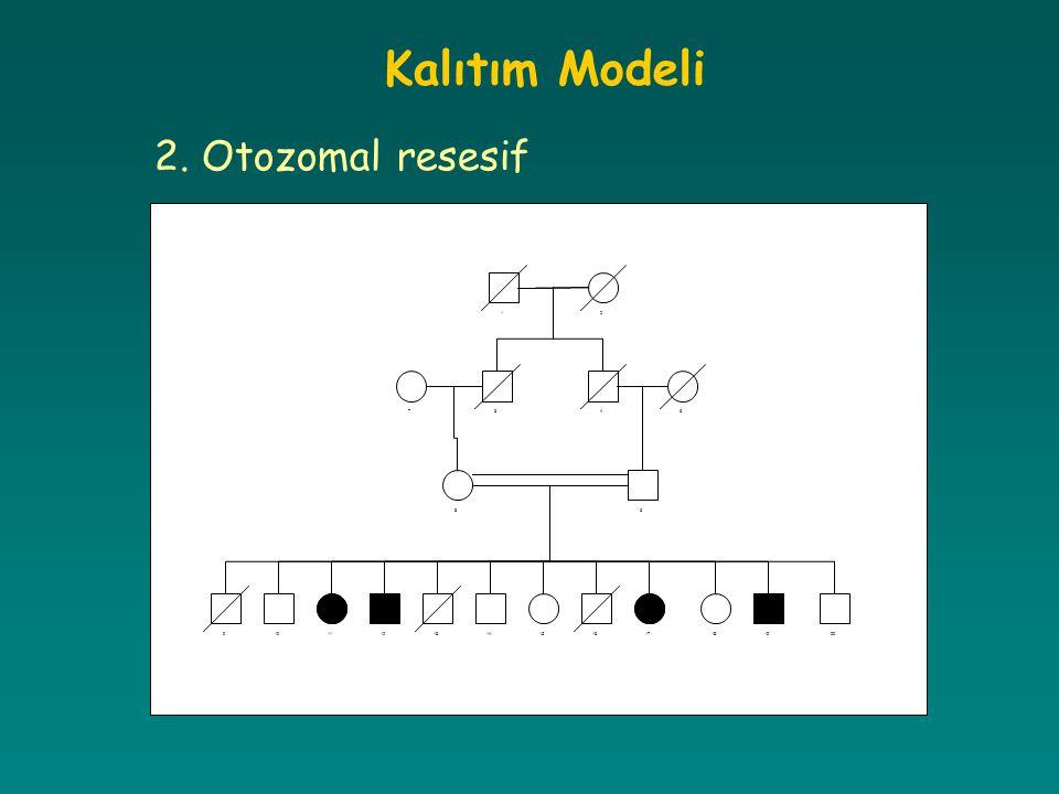 Kalıtım Modeli 2. Otozomal resesif 1 2 3 4 5 6 7 8 9 10 11 12 13 14 15