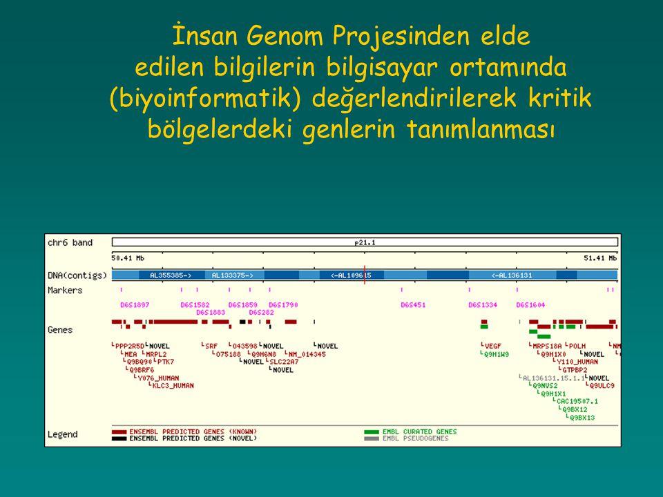 İnsan Genom Projesinden elde