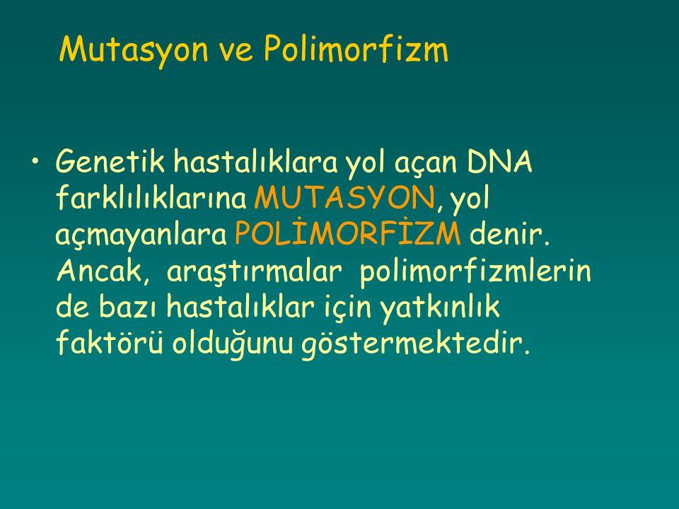 Mutasyon ve Polimorfizm