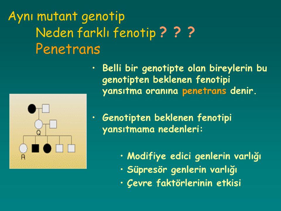 Aynı mutant genotip Neden farklı fenotip Penetrans