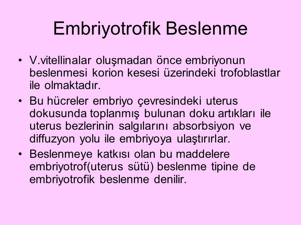 Embriyotrofik Beslenme