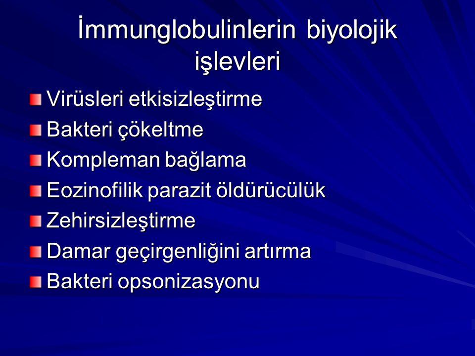 İmmunglobulinlerin biyolojik işlevleri