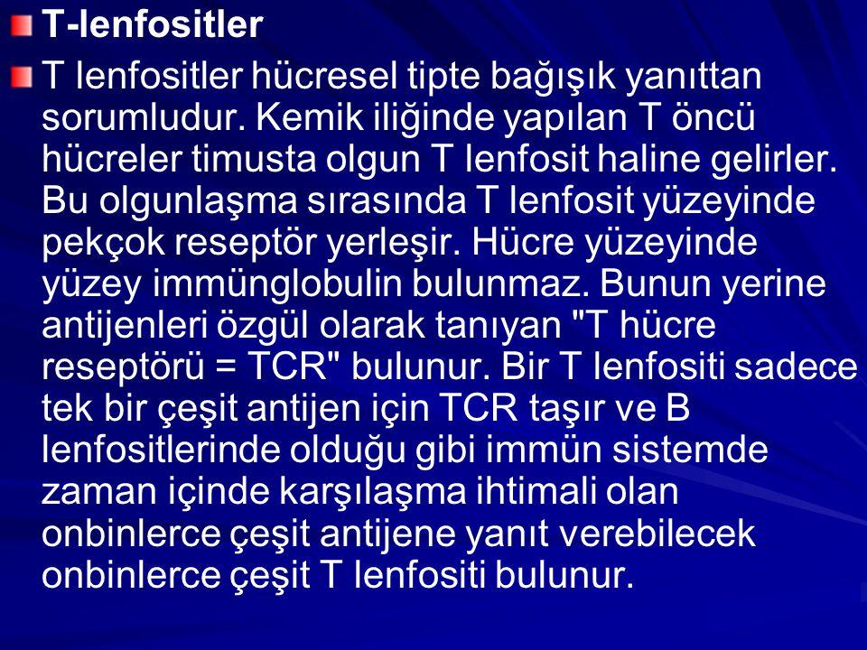 T-lenfositler