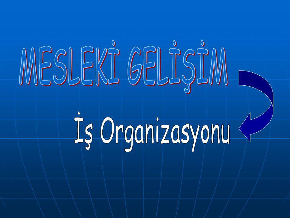 MESLEKİ GELİŞİM İş Organizasyonu