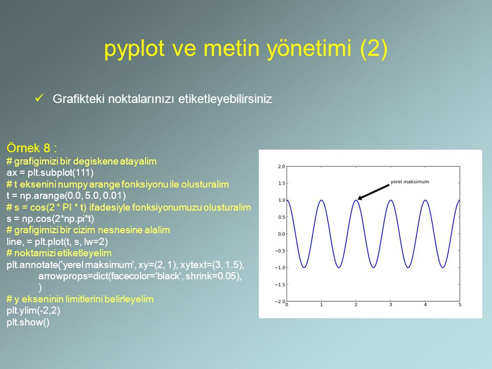 pyplot ve metin yönetimi (2)