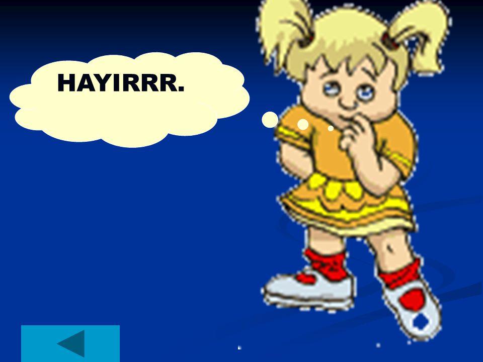 HAYIRRR.