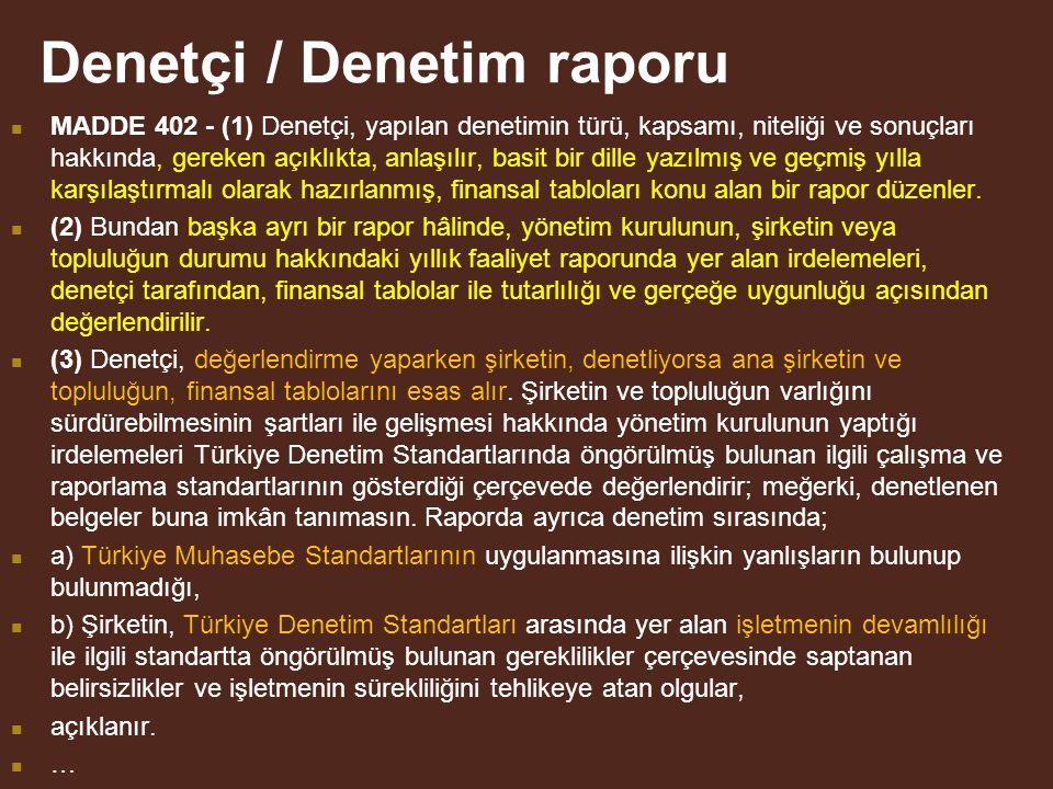 Denetçi / Denetim raporu