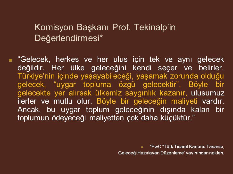 Komisyon Başkanı Prof. Tekinalp'in Değerlendirmesi*