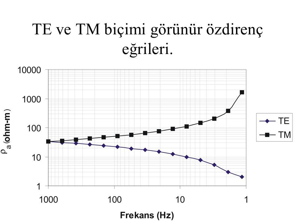 TE ve TM biçimi görünür özdirenç eğrileri.