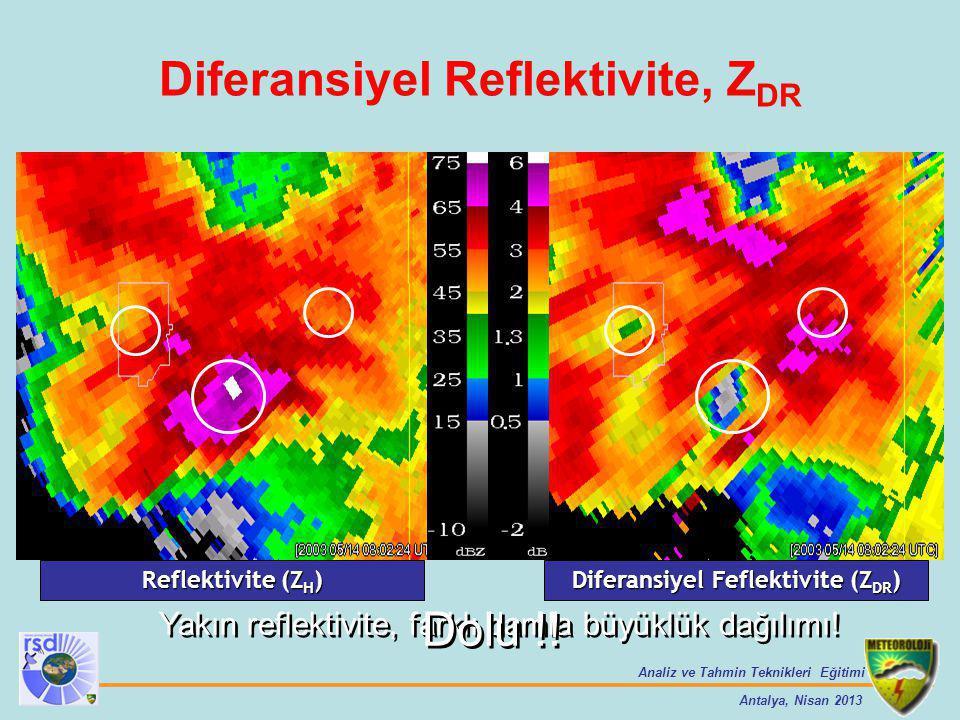 Diferansiyel Reflektivite, ZDR Diferansiyel Feflektivite (ZDR)