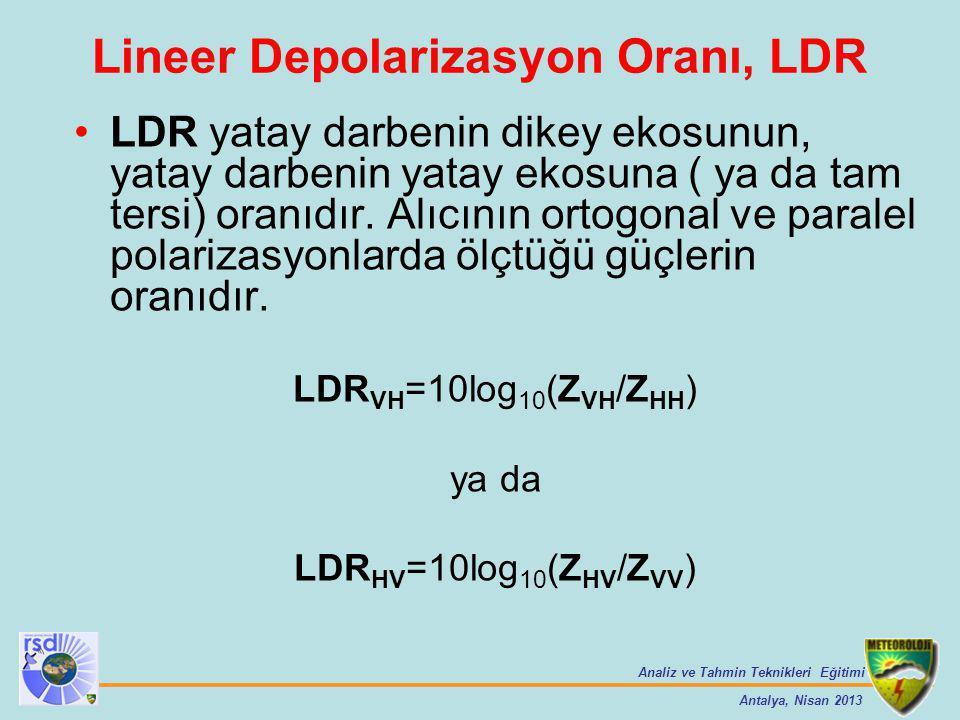 Lineer Depolarizasyon Oranı, LDR