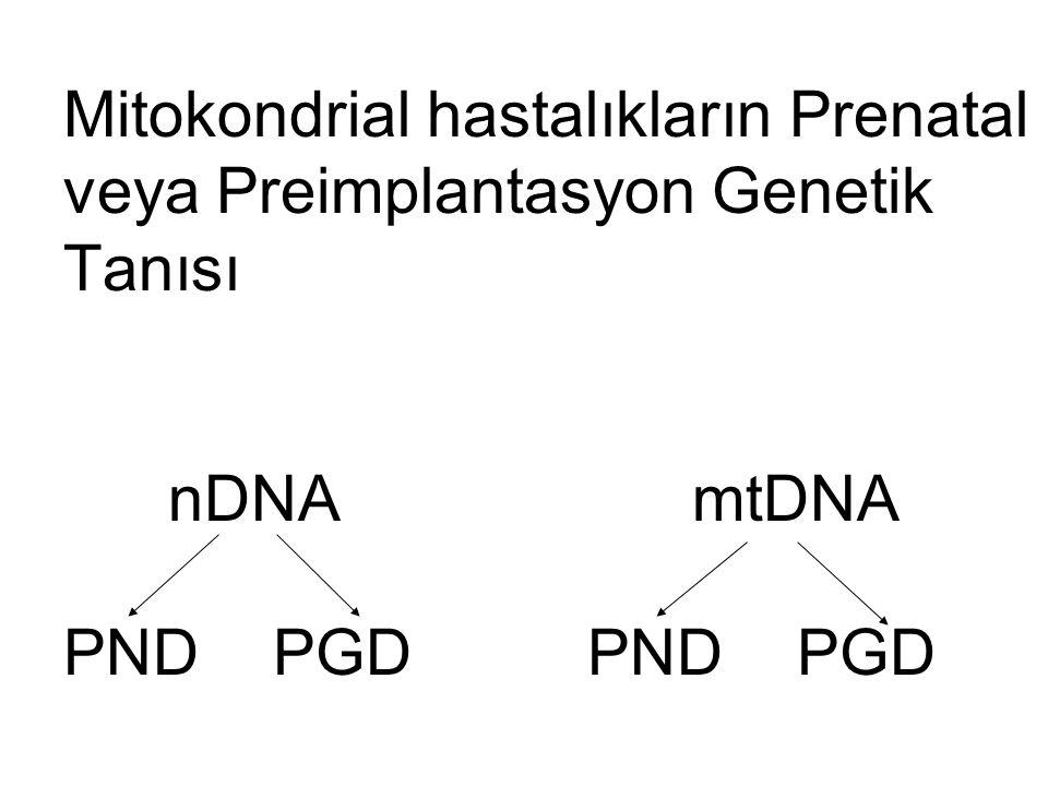 Mitokondrial hastalıkların Prenatal veya Preimplantasyon Genetik Tanısı nDNA mtDNA PND PGD PND PGD