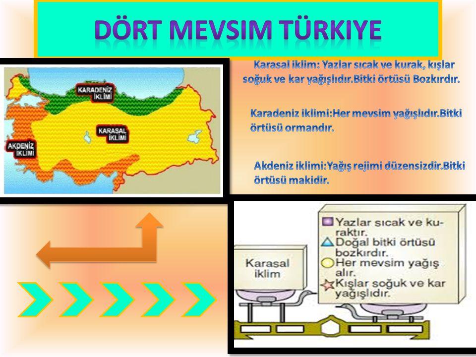 Dört mevsim Türkiye Karasal iklim: Yazlar sıcak ve kurak, kışlar soğuk ve kar yağışlıdır.Bitki örtüsü Bozkırdır.