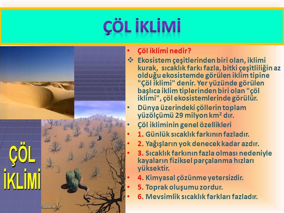 ÇÖL İKLİMİ Çöl iklimi nedir
