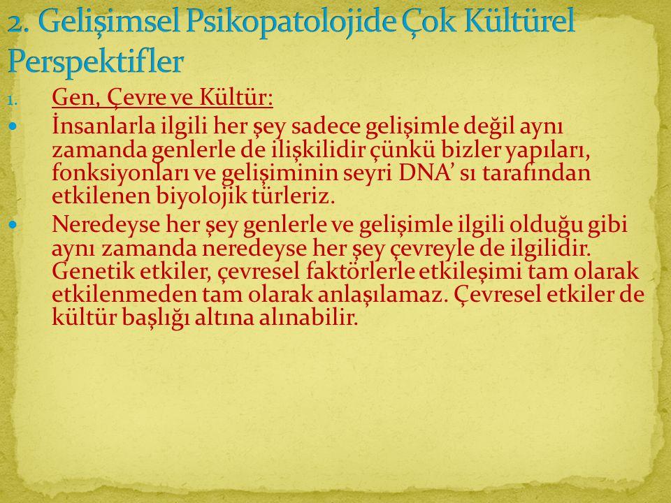 2. Gelişimsel Psikopatolojide Çok Kültürel Perspektifler