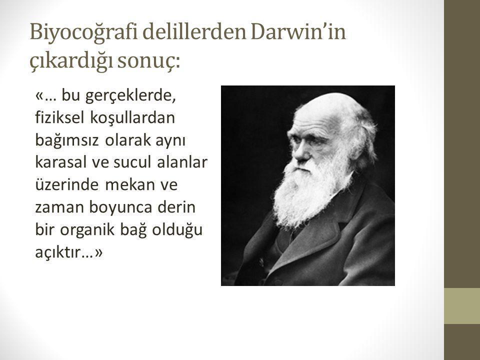 Biyocoğrafi delillerden Darwin'in çıkardığı sonuç: