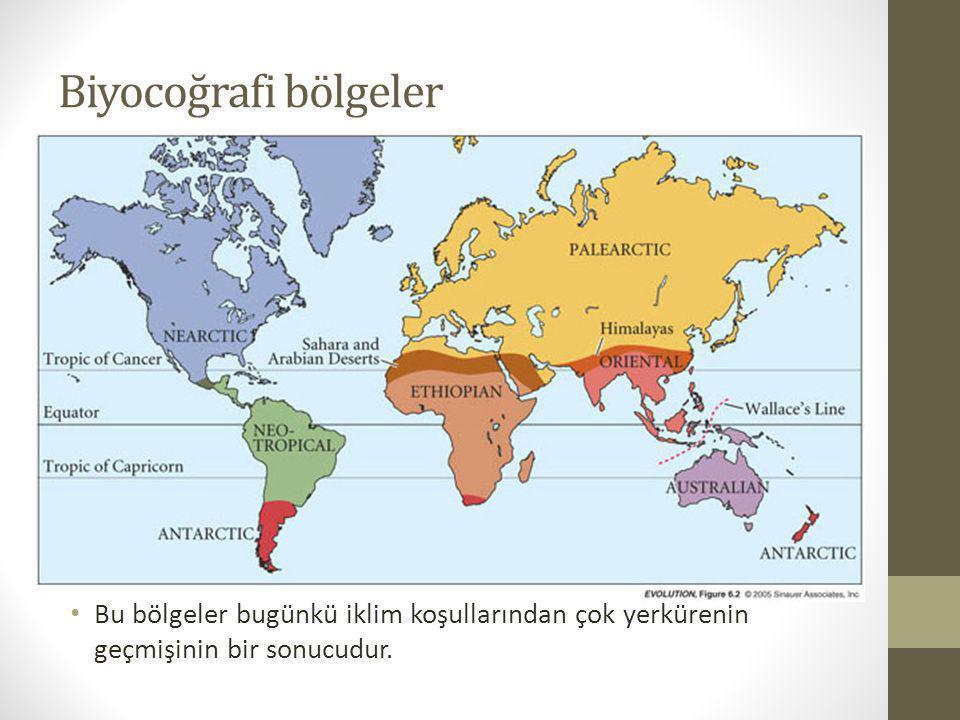 Biyocoğrafi bölgeler Bu bölgeler bugünkü iklim koşullarından çok yerkürenin geçmişinin bir sonucudur.
