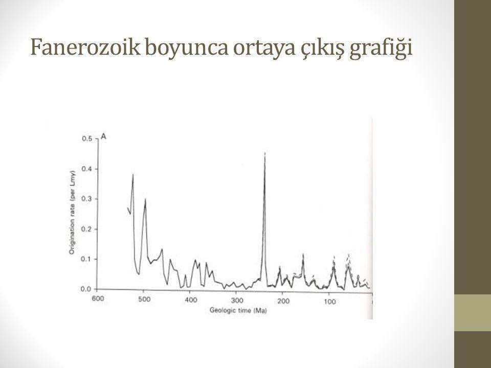 Fanerozoik boyunca ortaya çıkış grafiği