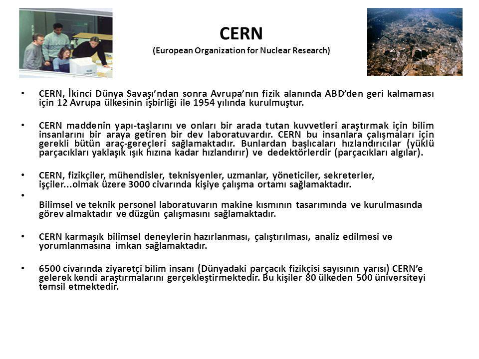 CERN (European Organization for Nuclear Research)