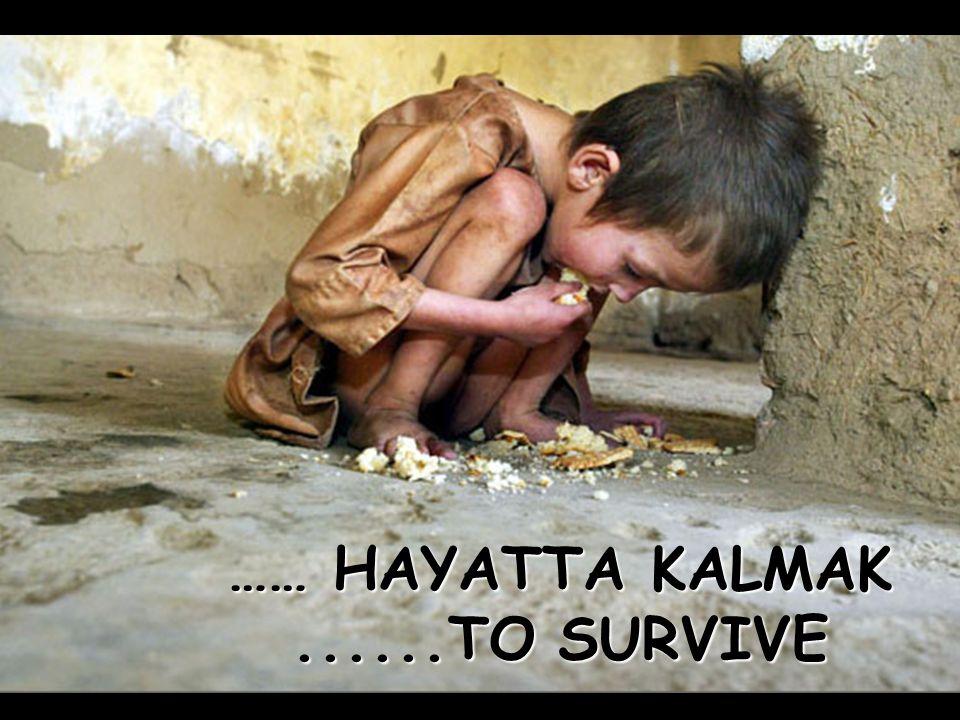 …… HAYATTA KALMAK ......TO SURVIVE