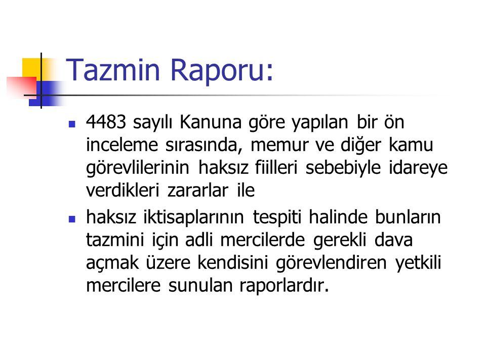 Tazmin Raporu: