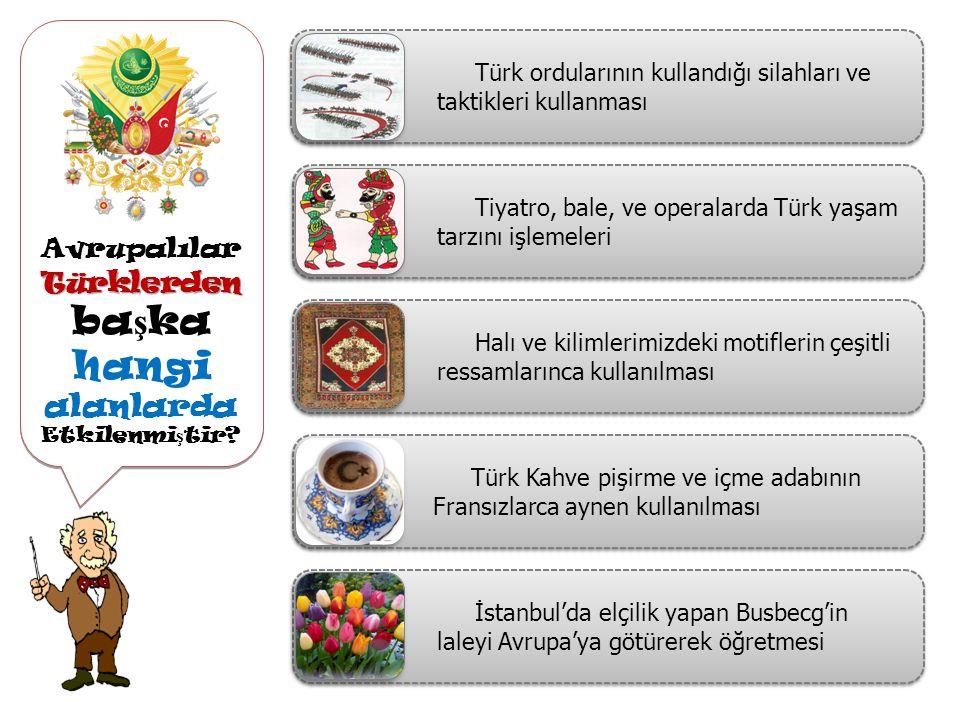 Avrupalılar Türklerden başka hangi alanlarda