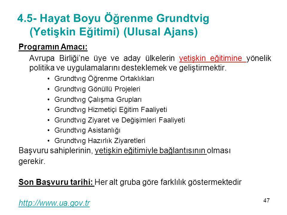 4.5- Hayat Boyu Öğrenme Grundtvig (Yetişkin Eğitimi) (Ulusal Ajans)