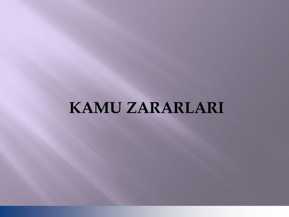 KAMU ZARARLARI